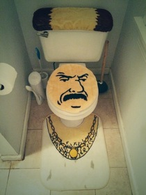 So this is our houses new toilet seat set