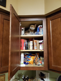 So this is where we keep the snacks