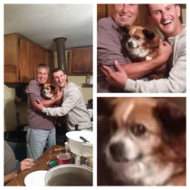 So we made bad family photos drunk one nightand the dog went full cat on us