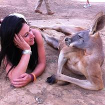 So while were talking about kangaroos this picture popped up on my newsfeed