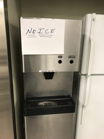 Someone thinks our ice maker is the shit