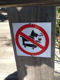 Sorry no cool dogs allowed