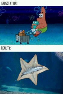 Spongebob expectation vs reality