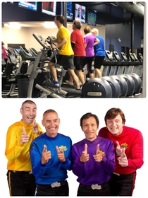 Spotted The Wiggles at the gym this morning