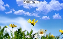 Spring  Never forget