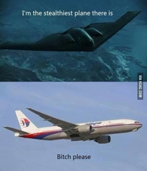 Stealth plane ish please
