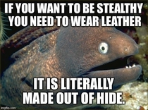 Stealthy Leather