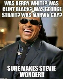Stevie Wonders about a lot of things