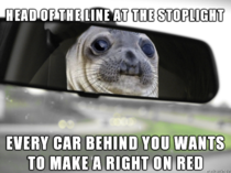 Stoplight Turn Seal