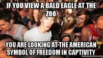 Sudden Clarity Clarence american freedom