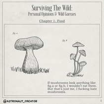 Surviving The Wild - I
