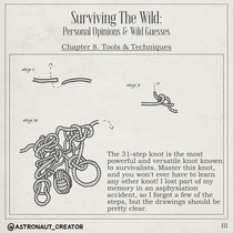 Surviving The Wild - III