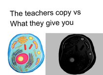 Teachers copy vs your copy
