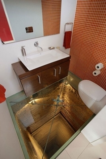 Terrifying ToiletToilet with glass floor over abandoned elevator shaft