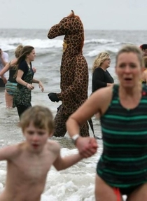 That feeling of panic when you realize youre being stalked by a beach giraffe