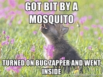 That will teach those mosquitoes