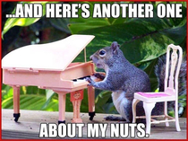 Thats a lot of nuts