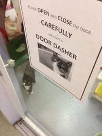 The animal shelter sign wasnt lying