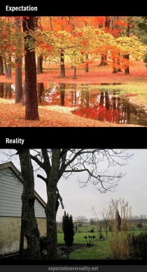 The beautiful colors of Fall