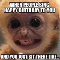 the-best-funny-pictures-of-happy-birthday-monkey-smile