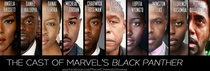 The cast of Marvels Black Panther