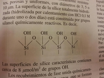 The chemical composition of a latina orgasm