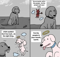 The Doggy Debate