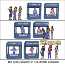 The gender disparity in STEM fields explained