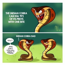 The Indian Cobra is kill machine  errr