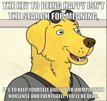 The key to happiness - Mr Peanut Butter