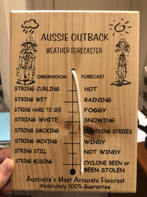The most accurate weather forecast apparatus Ive ever seen