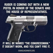 The new Congressman pistol