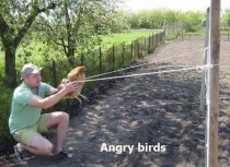 The new way of playing Angry Birds