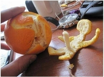 The next time you peel your orange