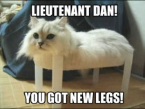 The only LOLCAT to ever make me literally LOL