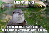 The otter has a point