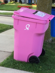 The perfect metaphor for donating to Susan G Komen