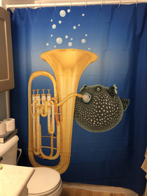 The perfect shower curtain doesnt exis