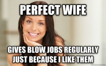 The Perfect Wife My Wife