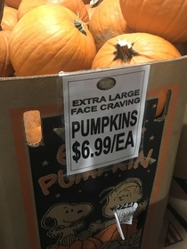 The pumpkins at my local grocery store have an unholy desire