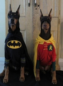 The real heroes Gotham need