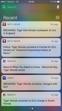 The way my news alerts came in made me think it was all the same Tiger