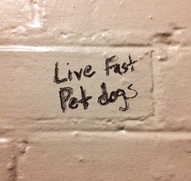 The writing on the bathroom wall