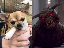 There is no Abbey only Zuul