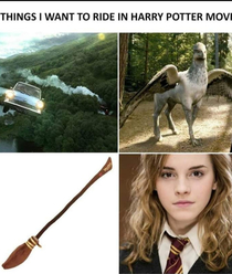 Things I want to ride in Harry potter movie