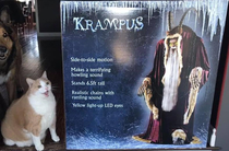 This cats reaction to Krampus