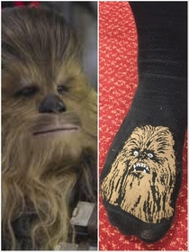 This chewbacca sock