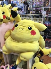 This fat pikachu