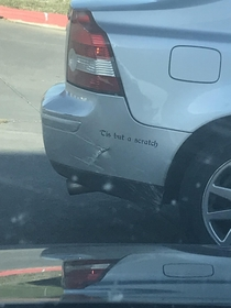 This guy turned his dinged up car into a Monty Python joke