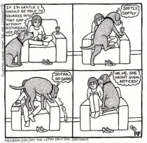 This happens to me all the time with my German Shepard